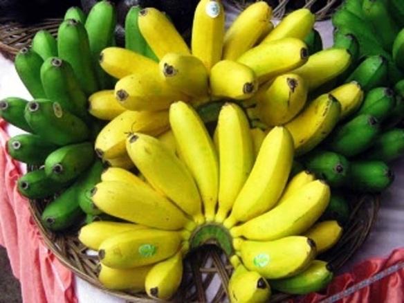 pisang emas